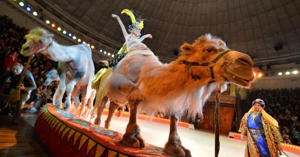 """19.set.2013 - Circo Nacional da Ucrânia utiliza camelos em seu novo show, """"Caravana as Maravilhas"""""""