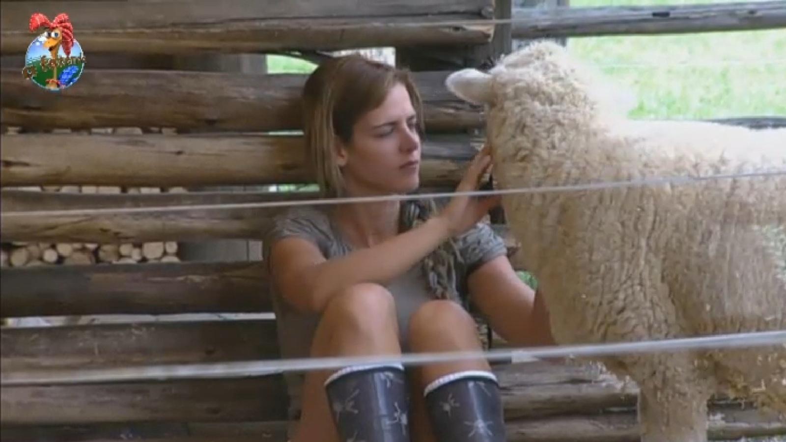 23.set.2013 - Denise se isola na área das ovelhas depois de discussão