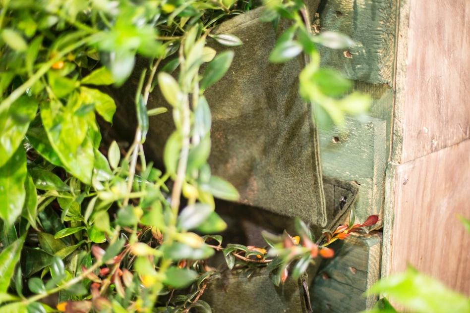 jardim vertical tecido:Patrícia Nishi optou por um jardim vertical feito de bolsas de tecido
