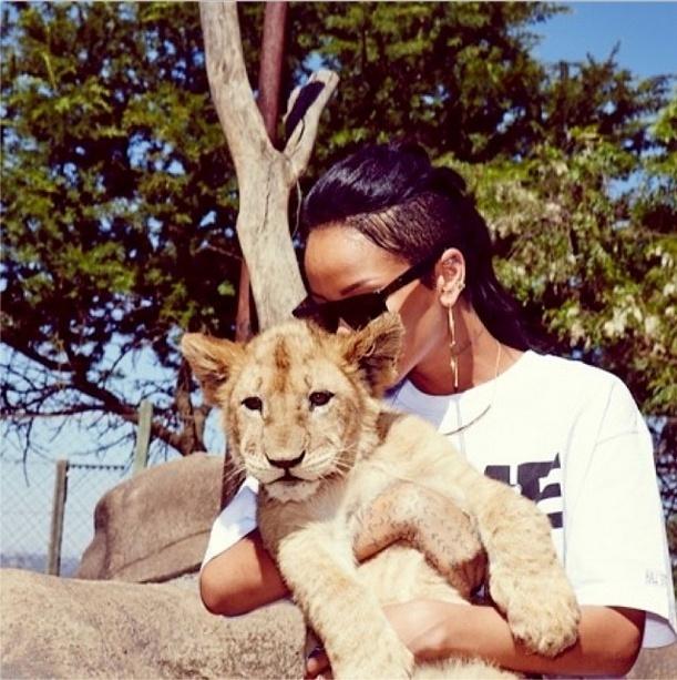 14.out.2013 - Rihanna beija animal durante passeio pelo Lion Park em Johannesburgo
