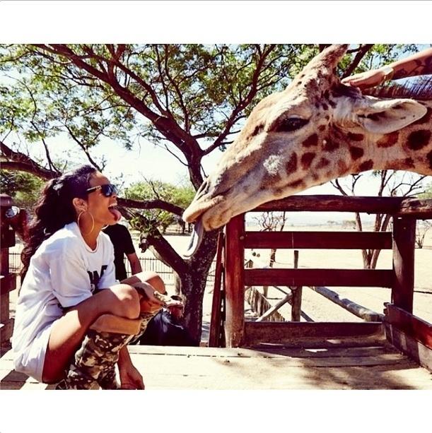 14.out.2013 - Rihanna e uma girafa mostram a língua uma para a outra no Lion Park em Johannesburgo. A cantora publicou a foto em sua conta no Instagram