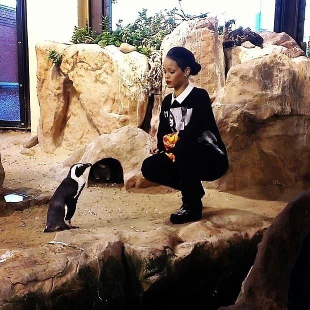 14.out.2013 - Rihanna posou com um pinguim durante visita a um aquário em Cape Town, na África do Sul