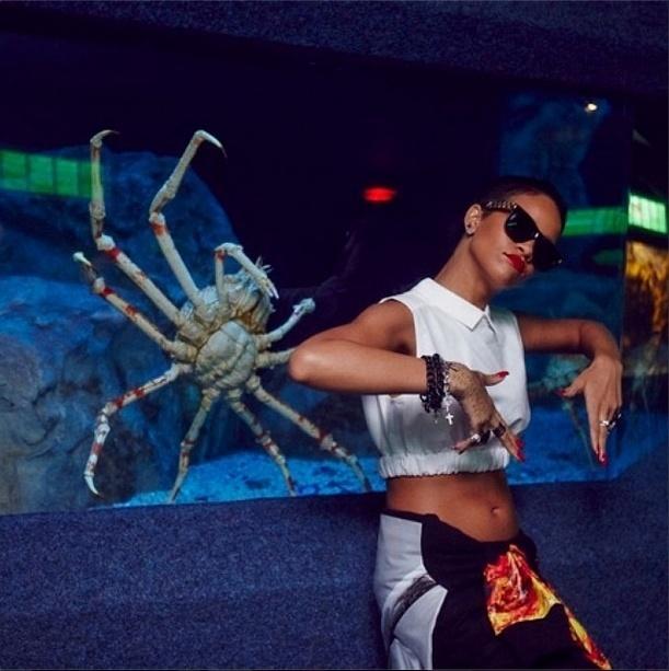14.out.2013 - Rihanna faz graça ao posar ao lado de caranguejo durante visita a um aquário em Cape Town, na África do Sul