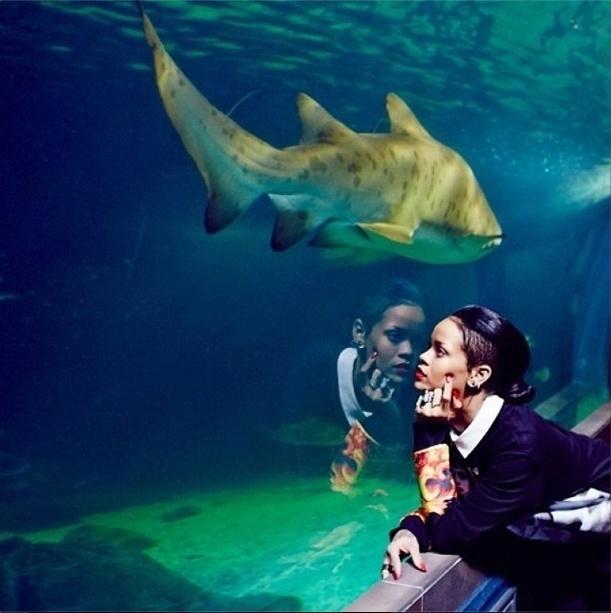 14.out.2013 - Rihanna observa os animais em aquário em Cape Town, na África do Sul