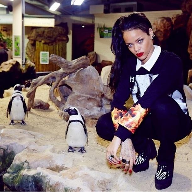 14.out.2013 - Rihanna posa ao lado de pinguins durante visita a um aquário em Cape Town, África do Sul