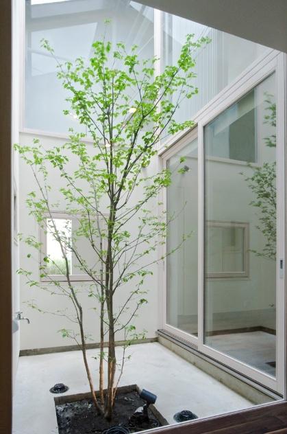 Casa japonesa utiliza janelas e trio para aproveitar sol for Atrio dentro casa