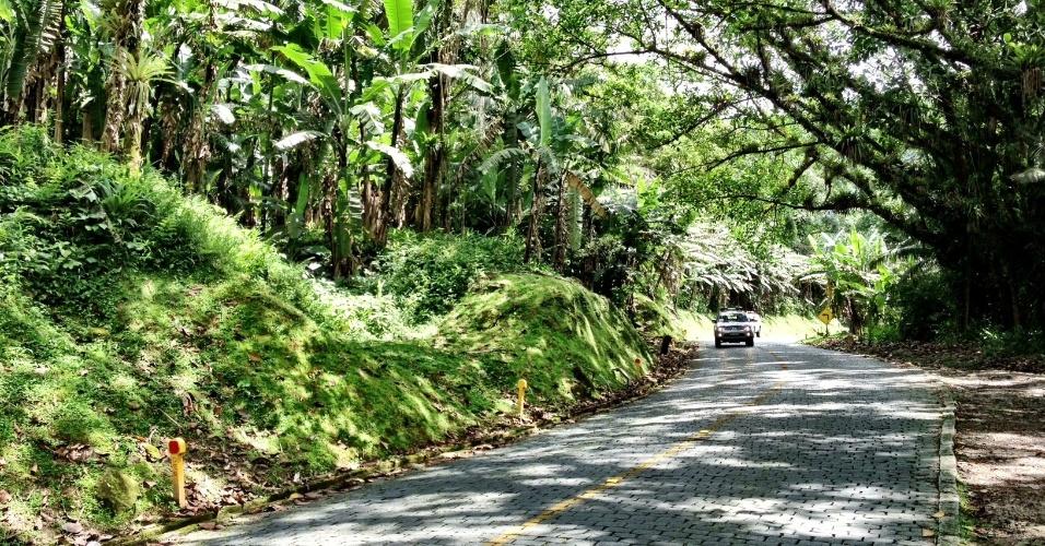 Veículos percorrem a Estrada da Graciosa, que cruza lindos trechos da mata atlântica e conecta a região de Curitiba com o município histórico de Morretes, no Paraná