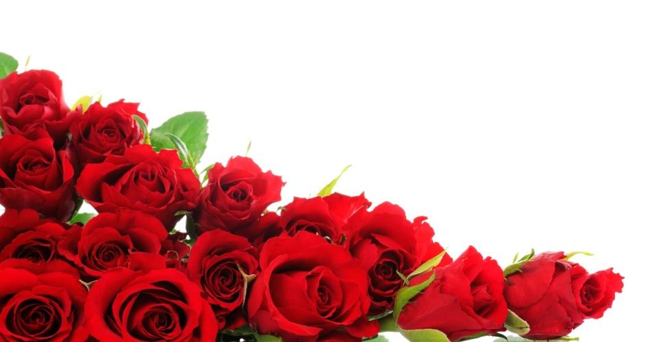 jardim rosas vermelhas:Imagens De Rosas Vermelhas