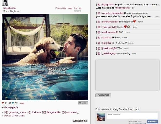 27.jan.2014 - Bruno Gagliasso se diverte na piscina da sua casa em Búzios com seu cachorro Zeca