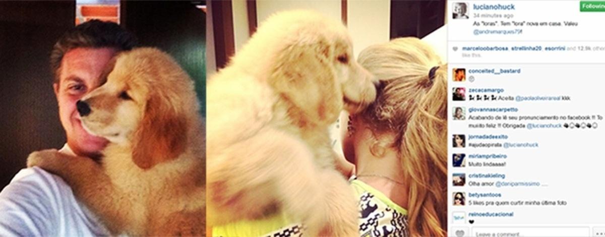 13.fez.2014- Angélica e Luciano Huck exibem a nova cachorrinha da família,