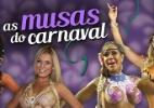 Conheça e compare os atributos das musas do Carnaval - Arte/UOL