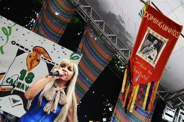 02.mar.2014- De peruca, Teresa Cristina se apresenta na Praça XV, no Centro do Rio, no Baile Multicultural
