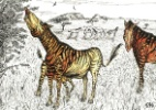 Animal pr�-hist�rico tinha caracter�sticas de zebra, cavalo e elefante