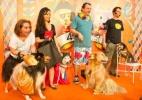 'C�ocurso' re�ne cachorros com fantasias de Carnaval em SP