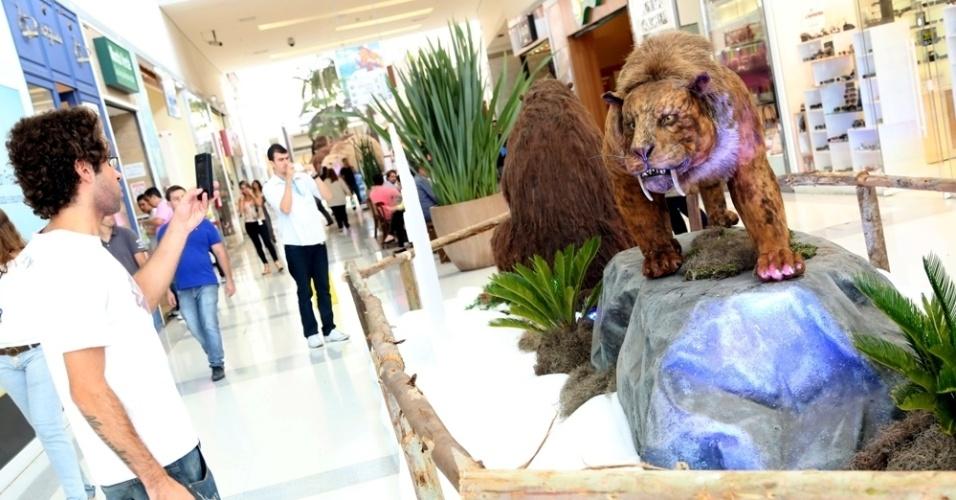 O ambiente da exposição possui 140 m², o público pode conhecer o habitat dos animais e tirar fotos com os personagens.