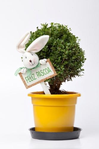 venda enfeites para jardim ? Doitri.com