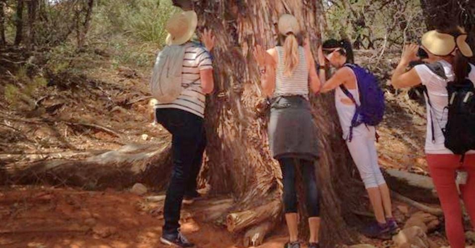 26.abr.2014 - Em retiro espiritual no Arizona, Gisele Bündchen relaxa ao lado de árvore