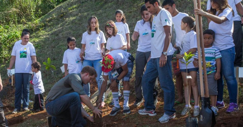 25.jun.2014 - Príncipe Harry planta árvore durante visita à Comunidade Cota 200, em Cubatão, no litoral de São Paulo