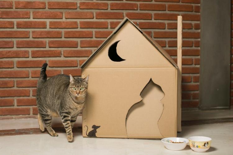 Fa a uma casinha para seu gato usando caixas de papel o - Casa para gato ...