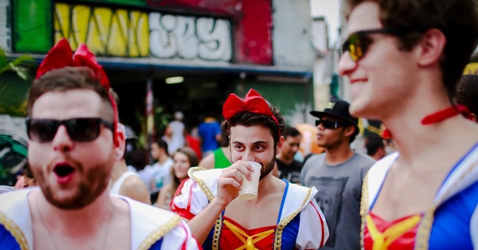 14.jan.2015 - Vestidos de Branca de Neve, foliões acompanham o bloco Cacique do Jaraguá