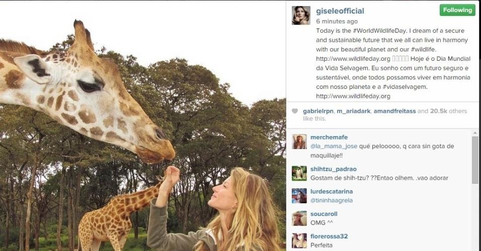 03.mar.2015 - Gisele Bündchen, sempre ligada às questões relacionadas à preservação da natureza, mostrou na tarde desta terça-feira em seu Instagram uma foto com uma girafa. A beldade fez ainda seus votos para o futuro do planeta.