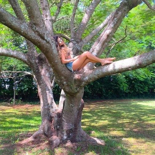 17.mar.2015 - Paula Fernandes sobe na árvore e posta foto no Instagram