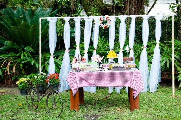 festa em silva jardim:com painéis para festas infantis