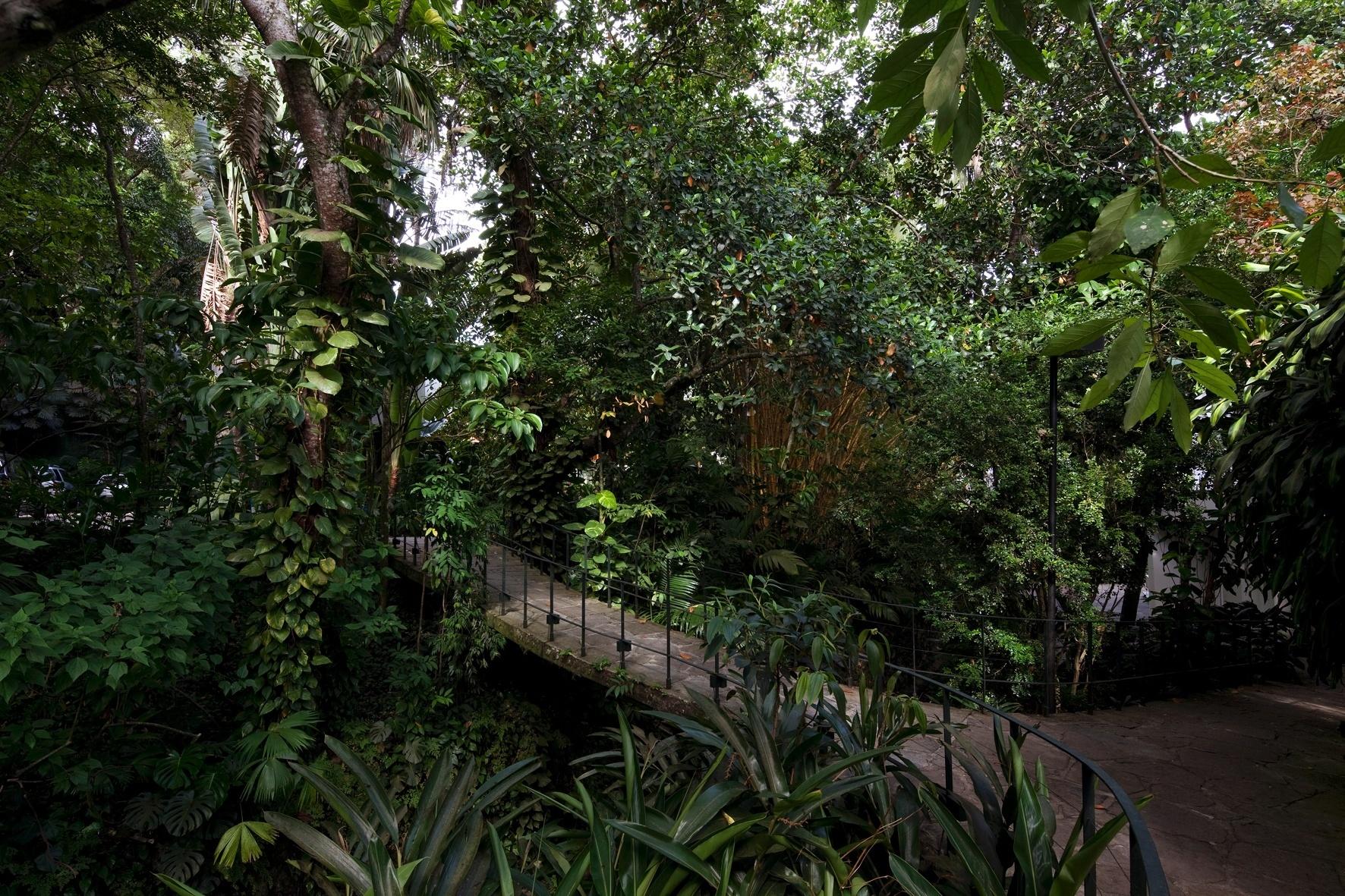 fotos jardins tropicaisFotos De Jardim Para Casa Veja Aqui Pictures