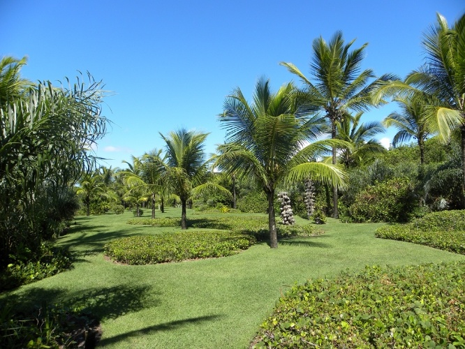 oasis mobiliario jardim:Este jardim em Trancoso, na Bahia, conta com 11 m² de área. O