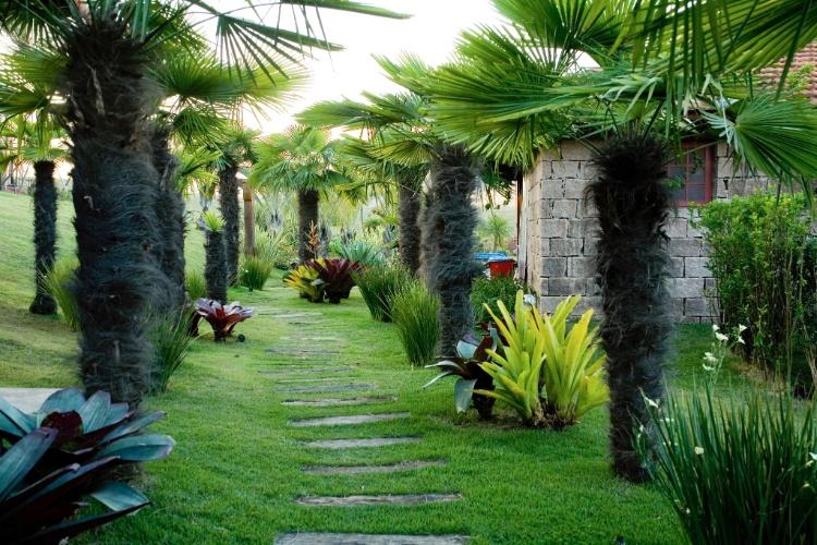 Jardim de fazenda tem fontes, bromélias e cantos para relaxar  Casa