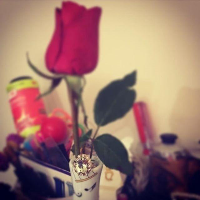 11.mai.2016 - Um anel de brilhantes. Esse foi o presente que Luana Piovani ganhou de presente do marido Pedro Scobby. A joia dentro de uma rosa vermelha encheu de orgulho a atriz, que publicou uma foto do mimo.