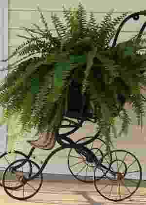 Reprodução/ Pinterest - steadmanscorner.blogspot.ca