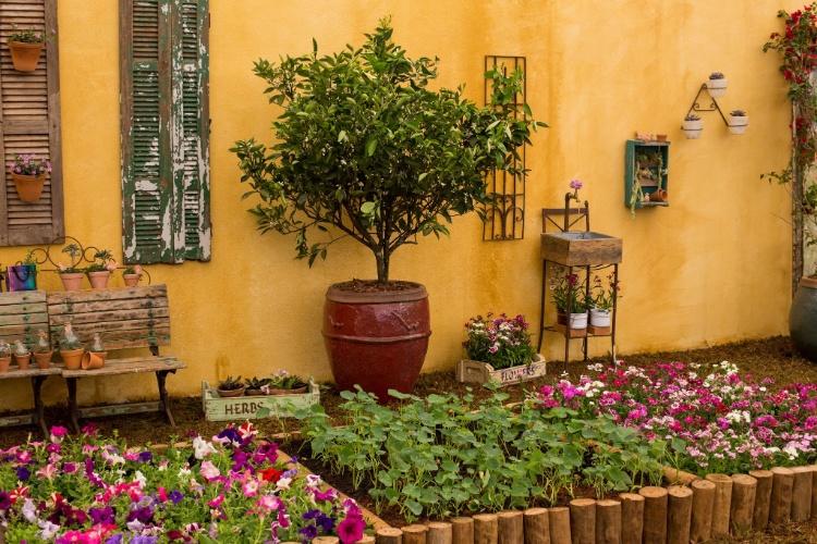 ideias para montar um jardim no quintal ? Doitri.com