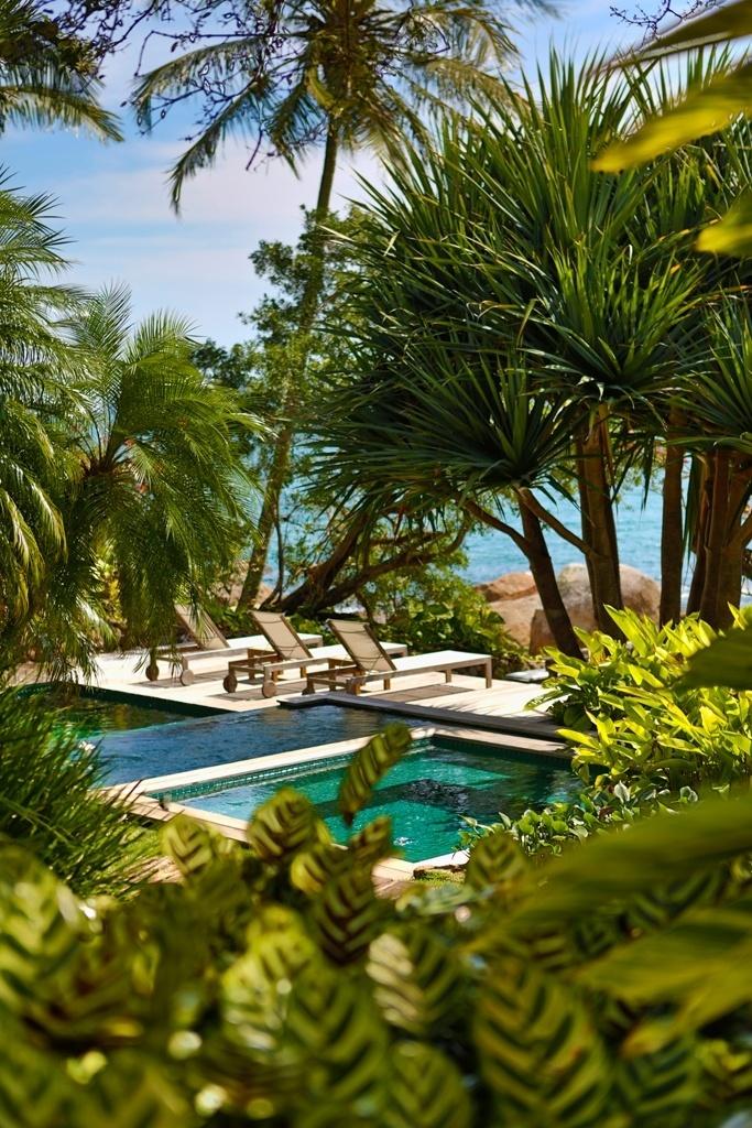 imagens de jardim tropicalDe frente para o mar, o jardim tropical