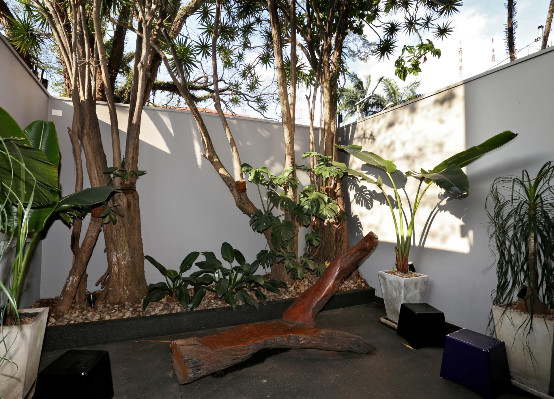 O jardim interno da casa Sumaré é composto por patas de elefante, dracenas, costelas-de-Adão e pelo banco de madeira da Oficina 7Netos. O piso é de fulget preto (granito lavado) e a reforma foi feita pela arquiteta Renata Popolo