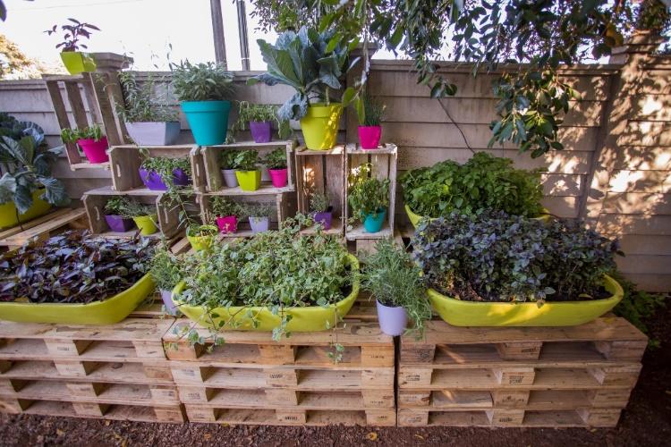 decorar meu jardim:Novaes e a paisagista Ana Maria Gaspar no espaço Frutos do Jardim