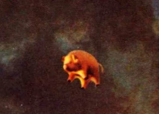Detalhe do porco inflável voador da capa do álbum