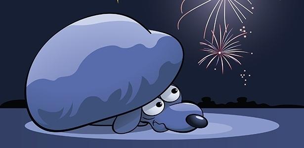Cães e gatos sofrem com o barulho dos fogos de artifício e com o estrondo dos trovões