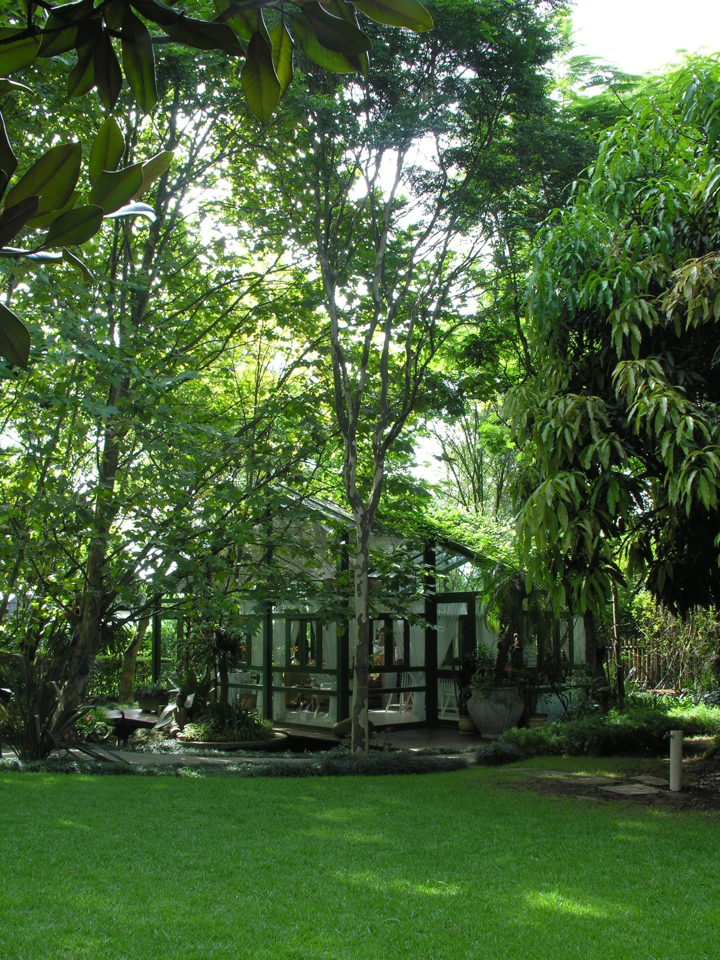 Em meio aos plátanos já presentes no jardim, o paisagista João Jadão construiu um gazebo para as tardes pintura e relaxamento em uma casa de Alphaville, na Grande São Paulo. A exuberância do conjunto fica por conta de uma profusão de espécies como bromélias imperiais, clorofitos, moreias, chifres-de-veado, aspargos, palmeiras fênix, mangueira e gramas preta e esmeralda