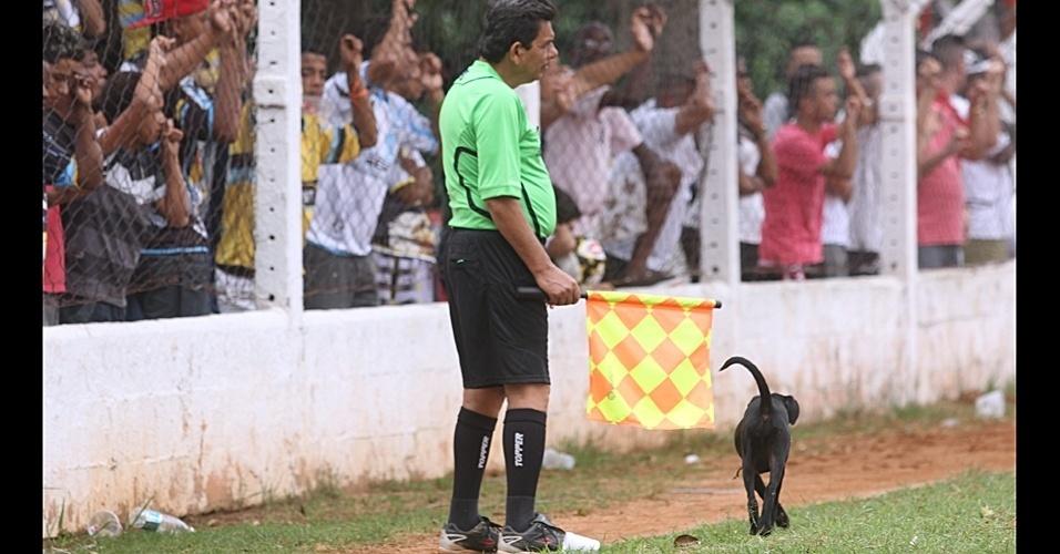 Cachorro invadiu o gramado na vitória do Jaçanã por 1 a 0 contra o Gessan