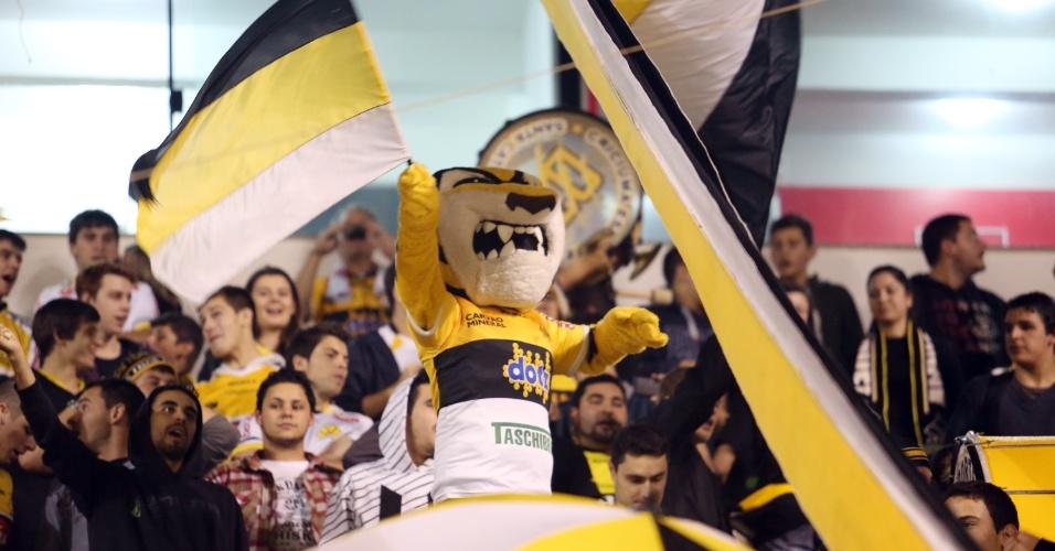 21.mai.2014 - O Tigre, mascote do Criciúma, balança bandeira no Heriberto Hulse