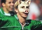 102 anos de Palmeiras, 30 anos de porco: relembre como mascote foi adotado - Folhapress