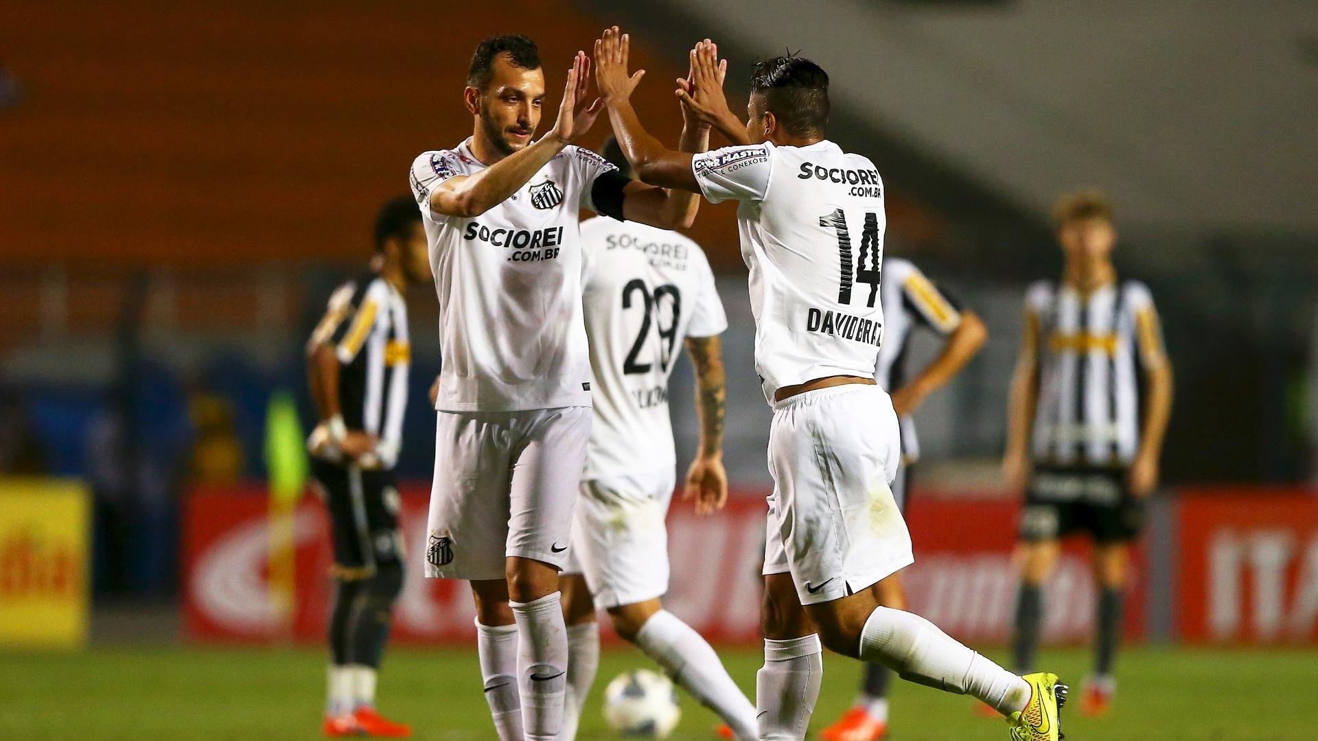 Edu Dracena comemora o gol marcado pelo zagueiro David Braz, pelo Santos, contra o Botafogo pela Copa do Brasil
