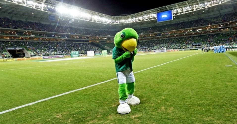 Mascote do Palmeiras beija símbolo no gramado da nova Arena Palestra
