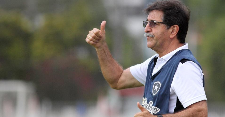 Técnico do Botafogo, René Simões gesticula com jogadores durante partida