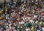 Torcedores esgotam ingressos para primeira partida entre Palmeiras x Santos