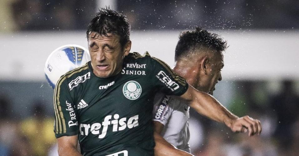 Robinho e Werley disputam bola na partida entre Palmeiras e Santos