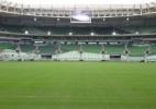 WTorre diz que poupará gramado do Allianz em evento da Liga dos Campeões - Diego Salgado/UOL Esporte