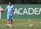 Palmeiras vive remontagem e ganha opções táticas para o Brasileirão; veja