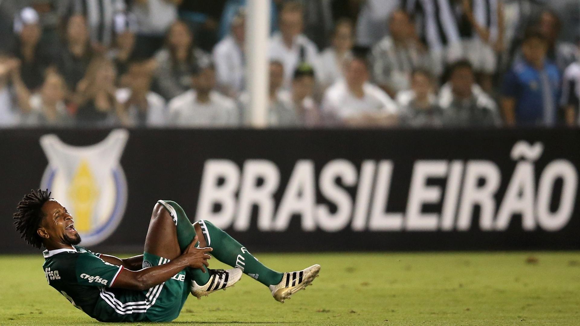 Zé Roberto cai no gramado em Palmeiras 0 x 1 Santos pelo Brasileirão